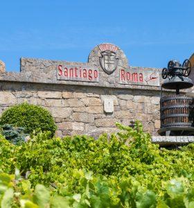 Bodegas Santiago Roma, Rias Baixas, Spain